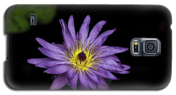 Lilly Glow Galaxy S5 Case