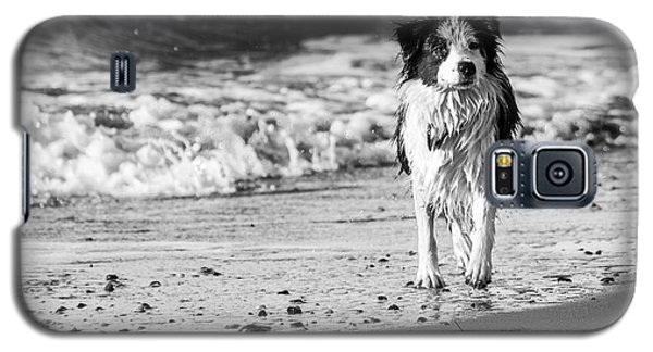 Lilly On The Beach Galaxy S5 Case