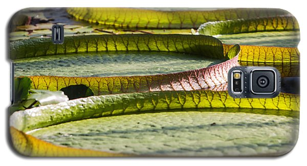 Galaxy S5 Case featuring the photograph Lilly Pads by John Wadleigh