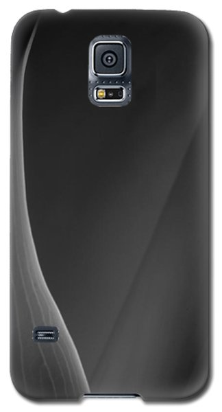 Lily 3 Galaxy S5 Case by Joe Kozlowski