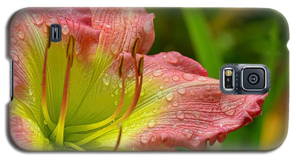 Lily After The Rain Galaxy S5 Case