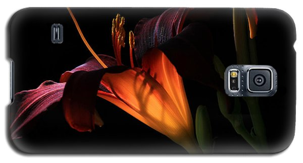 Lily Ambiance Galaxy S5 Case by Donna Kennedy
