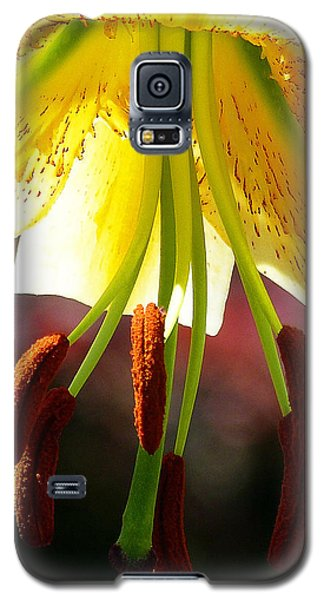 Lily Chandelier Galaxy S5 Case
