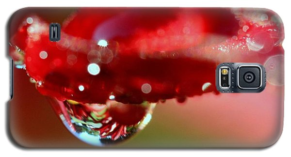 Galaxy S5 Case featuring the photograph Lily Droplets by Suzanne Stout