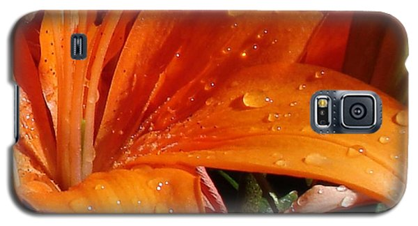 Galaxy S5 Case featuring the photograph Lily Drops by Kerri Mortenson