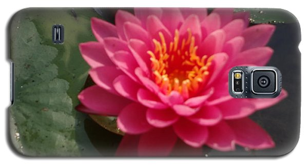 Galaxy S5 Case featuring the photograph Lily Flower In Bloom by Michael Porchik