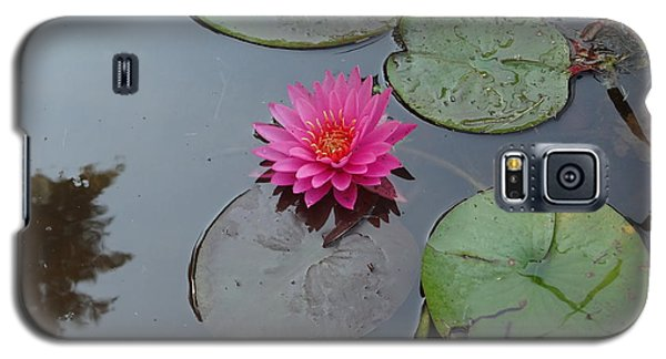 Lily Flower Galaxy S5 Case by Michael Porchik