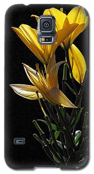 Lily Light Galaxy S5 Case