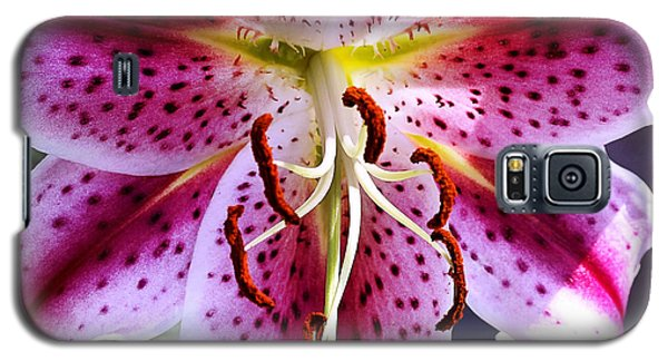 Lily In Bloom Galaxy S5 Case