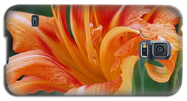 Lily In Orange2 Galaxy S5 Case