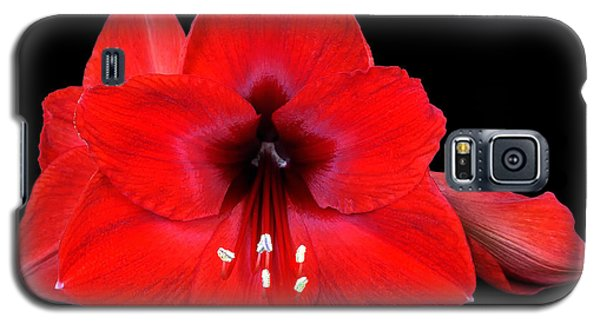 Lily In Red   Galaxy S5 Case