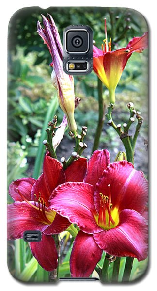 Lily In The Garden Galaxy S5 Case