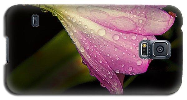Lily In The Rain Galaxy S5 Case