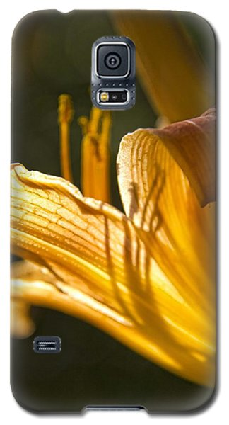 Lily In The Yard Galaxy S5 Case