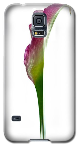 Galaxy S5 Case featuring the photograph Lily by Jonathan Nguyen