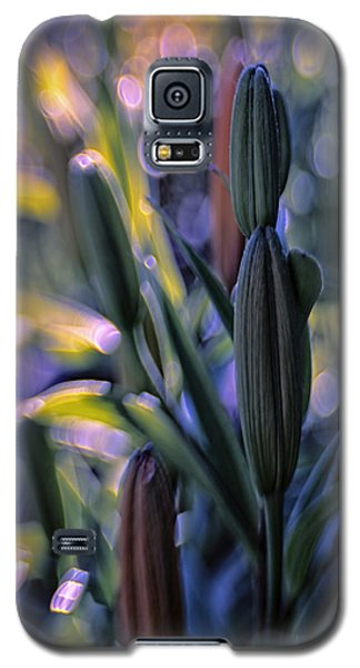 Lily Light Galaxy S5 Case by Jean OKeeffe Macro Abundance Art