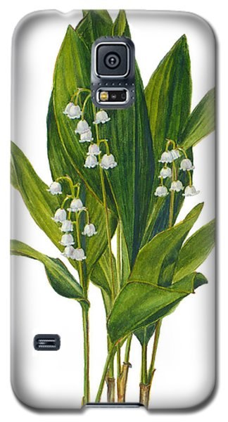 Lily Of The Valley - Convallaria Majalis Galaxy S5 Case