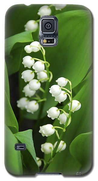 Lily-of-the-valley  Galaxy S5 Case