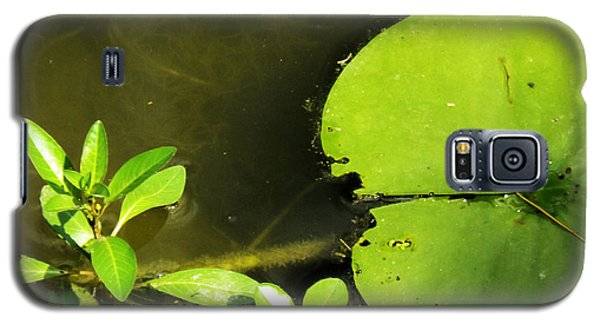 Lily Pad Galaxy S5 Case by Robyn King