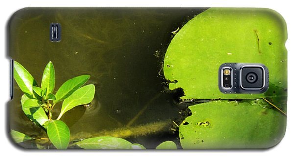 Lily Pad Galaxy S5 Case