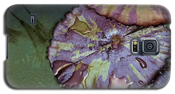 Lily Pads And Papyrus Reflection Galaxy S5 Case