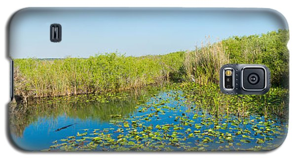 Lily Pads In The Lake, Anhinga Trail Galaxy S5 Case