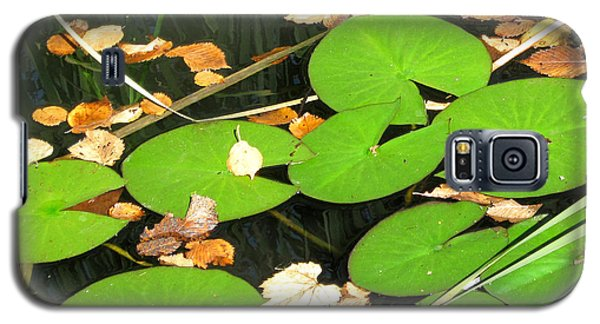 Lily Pads Galaxy S5 Case by Mary Bedy