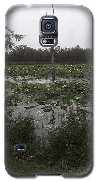 Galaxy S5 Case featuring the photograph Lily Pads by Fortunate Findings Shirley Dickerson