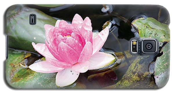 Lily Pond Galaxy S5 Case