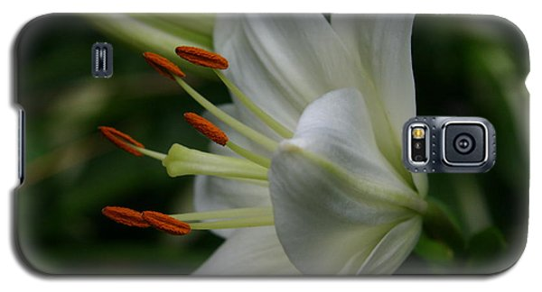 Galaxy S5 Case featuring the photograph Lily Pure by Denyse Duhaime