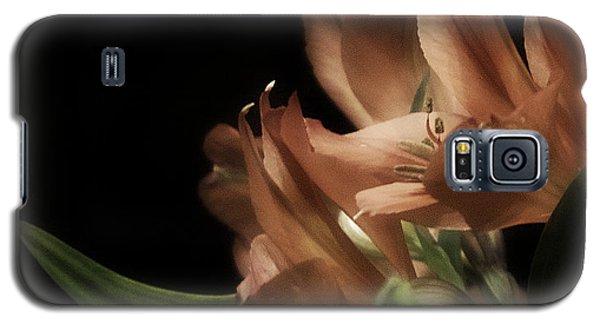 Lily Romantica Galaxy S5 Case by Richard Cummings