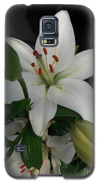 Lily White Galaxy S5 Case