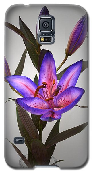 Lily With Her Buddies. Galaxy S5 Case by Terence Davis