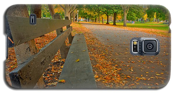 Lincoln Park Bench In Fall Galaxy S5 Case