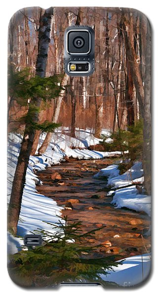 Lincoln Woods Trail Galaxy S5 Case