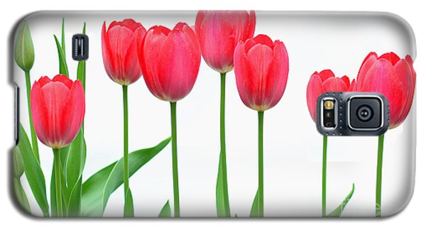 Line Of Tulips Galaxy S5 Case