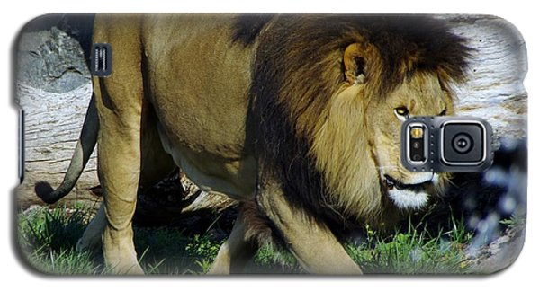 Lion 1 Galaxy S5 Case