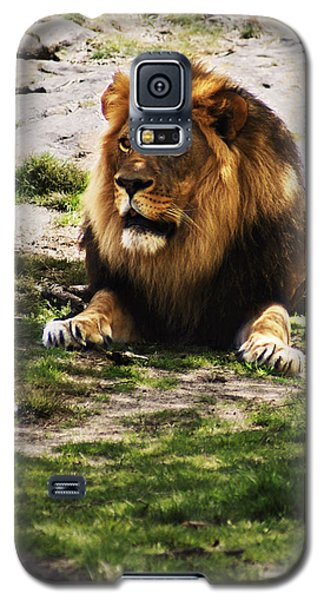 Galaxy S5 Case featuring the photograph Lion At Rest by B Wayne Mullins