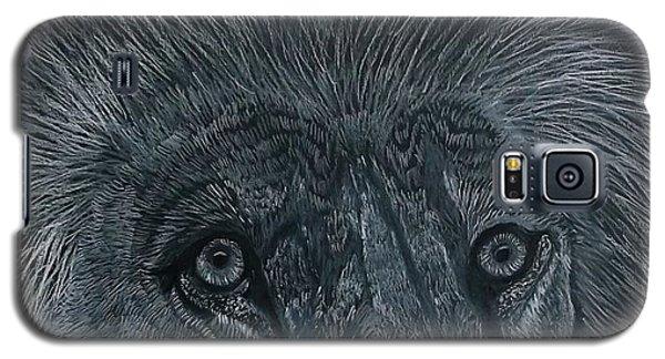 Lion Eyes  African King Detail Galaxy S5 Case