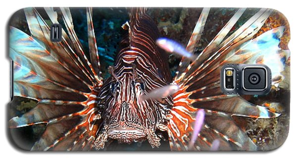 Galaxy S5 Case featuring the photograph Lion Fish - En Garde by Amy McDaniel