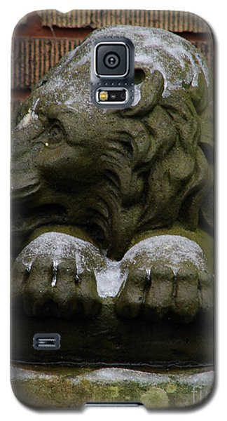 Lion In Winter Galaxy S5 Case
