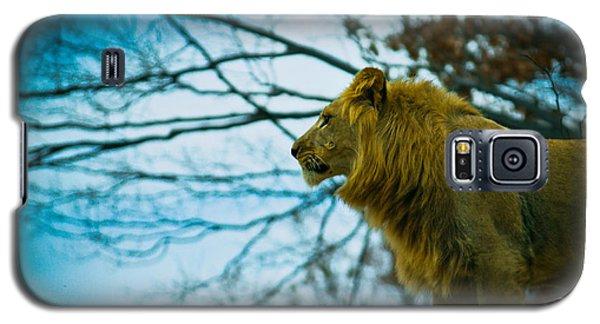 Lion King Galaxy S5 Case by Sara Frank