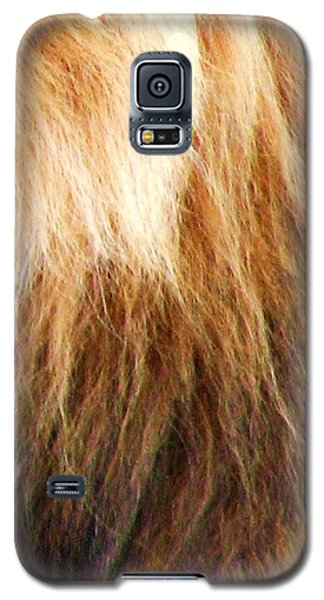 Lion Mane Galaxy S5 Case by Cleaster Cotton