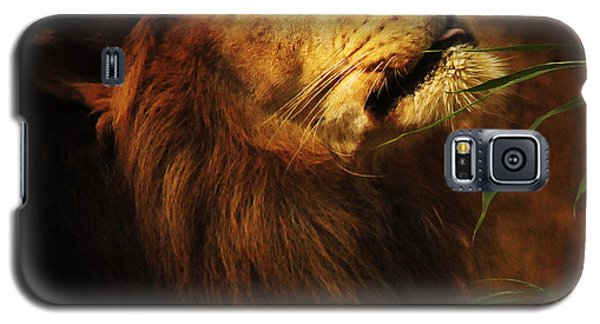 Galaxy S5 Case featuring the photograph The Lion Of Judah by Olivia Hardwicke
