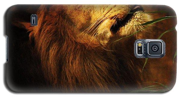 The Lion Of Judah Galaxy S5 Case