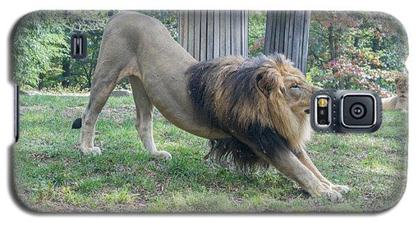 Lion Yoga Galaxy S5 Case