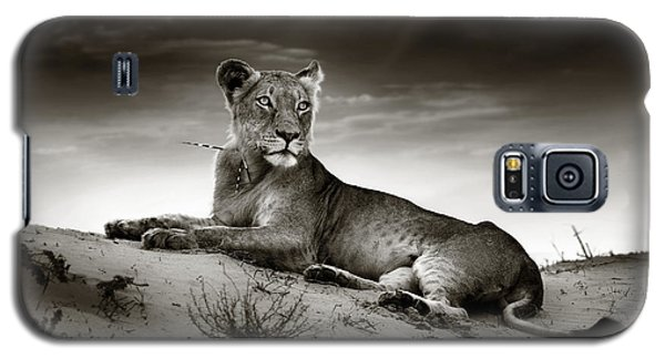 Cats Galaxy S5 Case - Lioness On Desert Dune by Johan Swanepoel