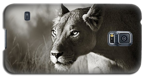 Cats Galaxy S5 Case - Lioness Stalking by Johan Swanepoel