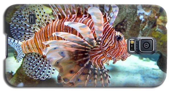 Lionfish Galaxy S5 Case by Sandi OReilly