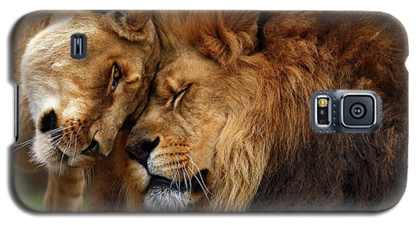 Lions In Love Galaxy S5 Case
